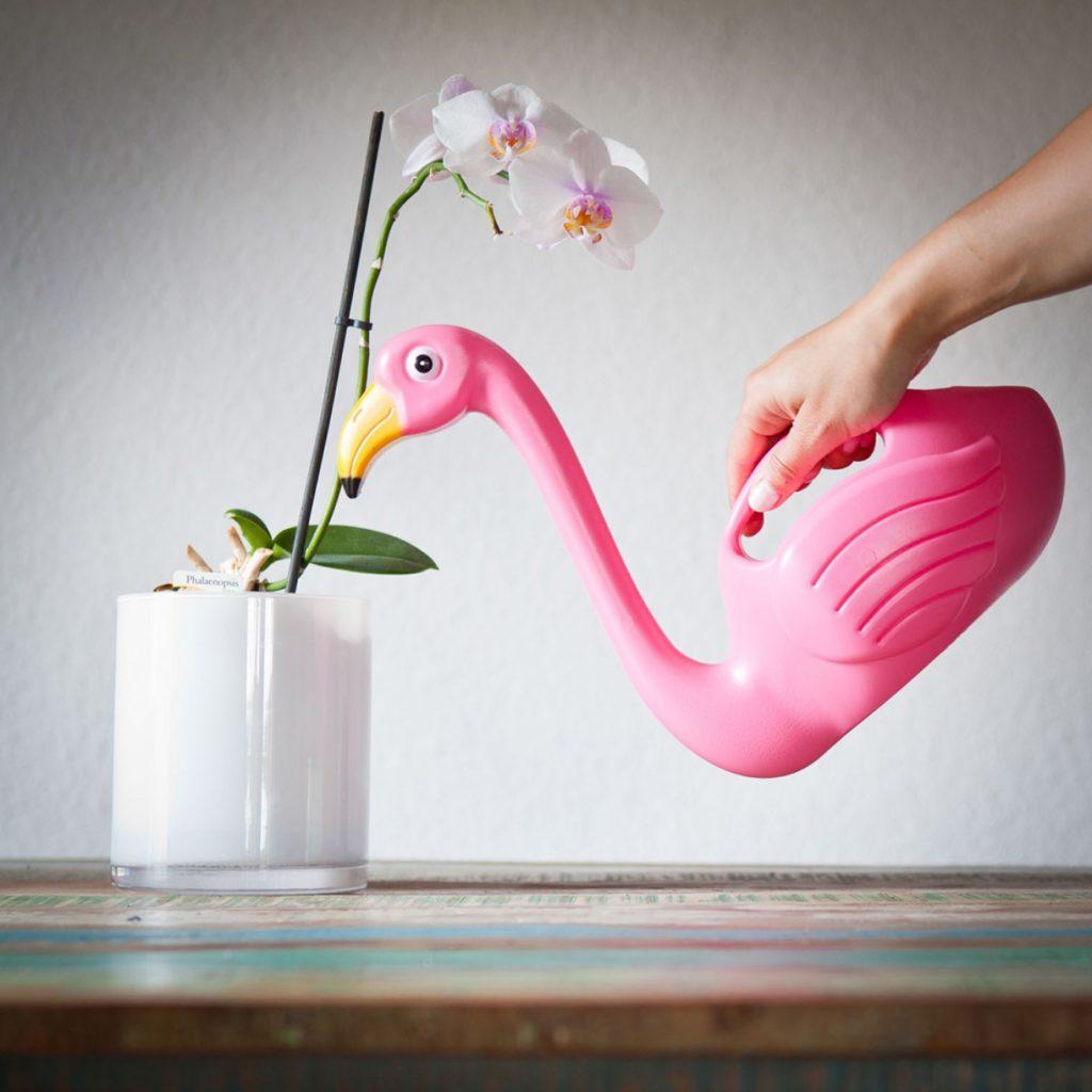 Idee regalo: innaffiatoio a forma di fenicottero